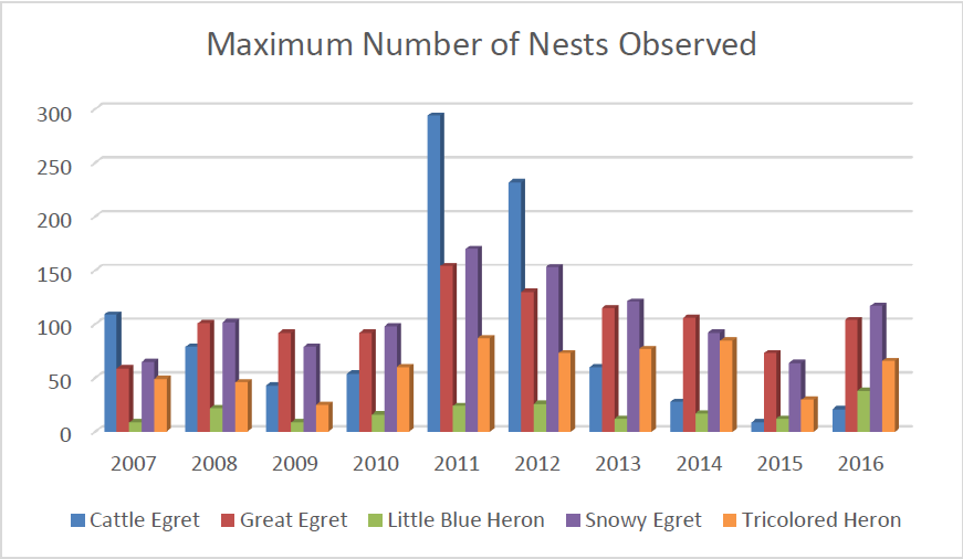 max-nest