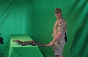 green screen 3