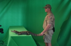 green screen 4